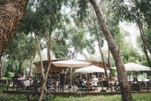 קפה תפוז בטבע בפארק הרצליה (צילום: יעל אמיר)