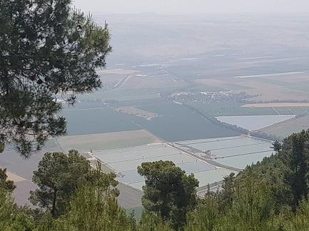 הנוף מלודג' מנרה